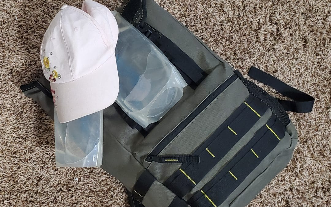 What's in my Plein Air bag? One bag to hold it all!