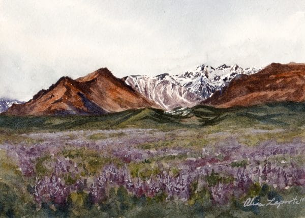 Lavender Mountains